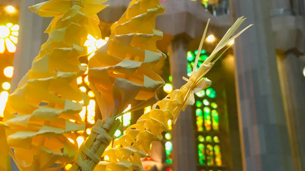 Rameaux à la Sagrada Familia