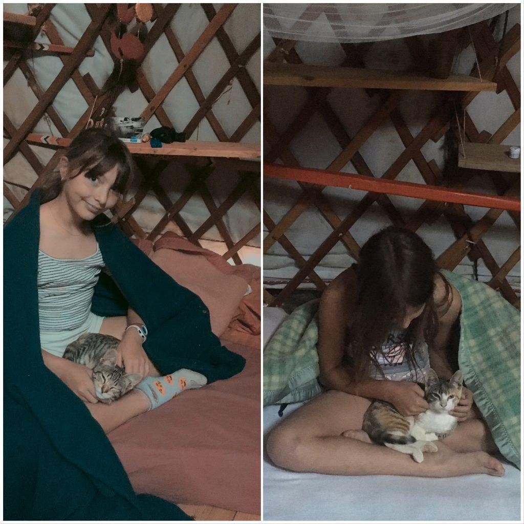 Des filles et des chatons
