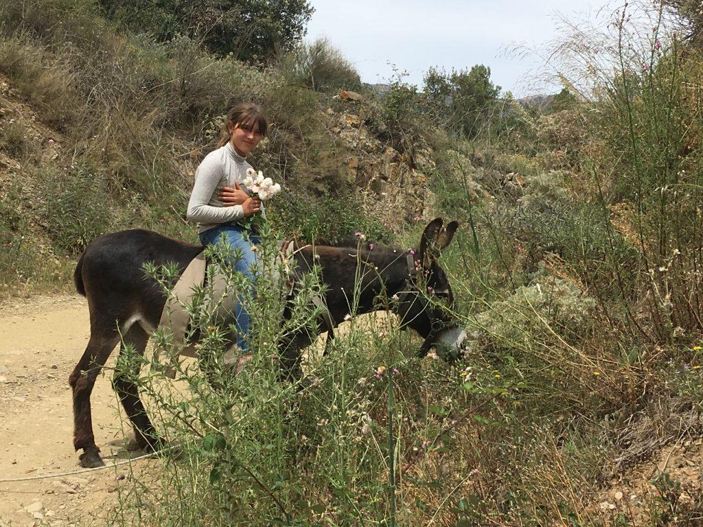 Balade sur l'un des ânes de la Mandorla
