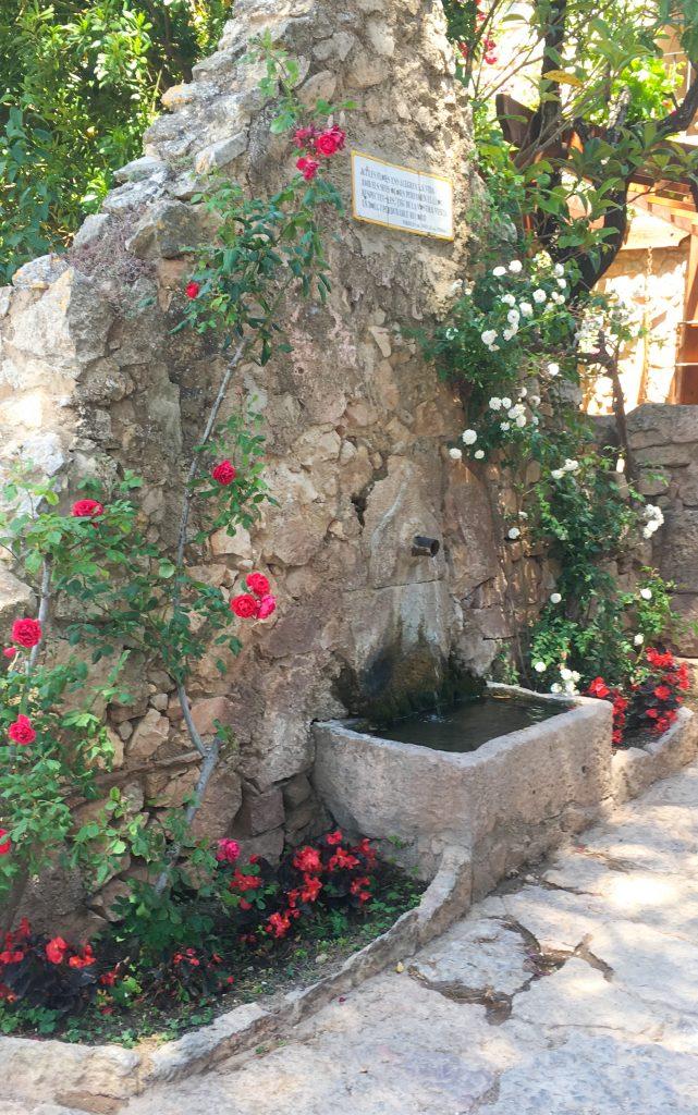 Fontaine fleuri à Siurana
