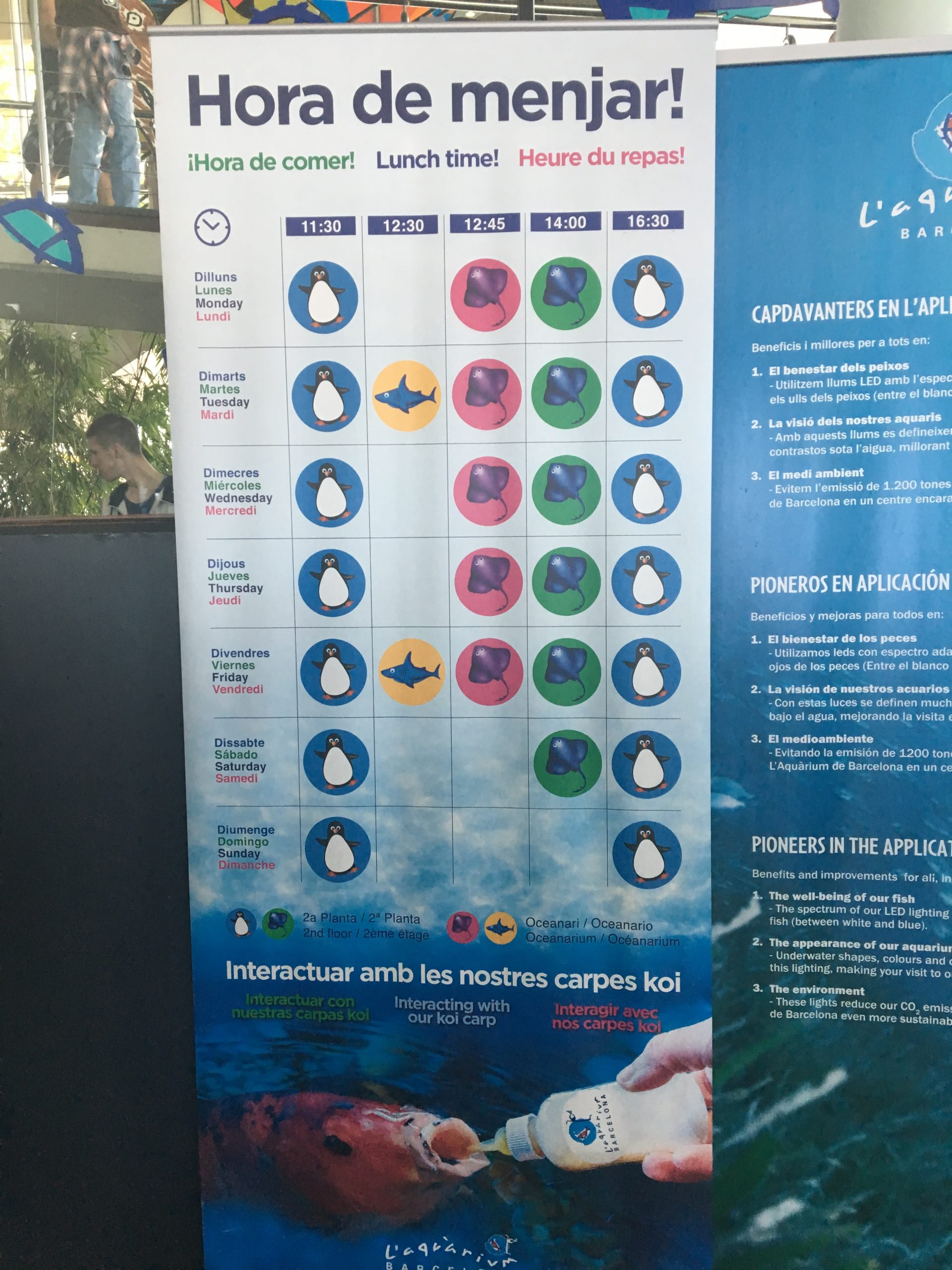 Aquarium de Barcelone-planning nourriture des animaux