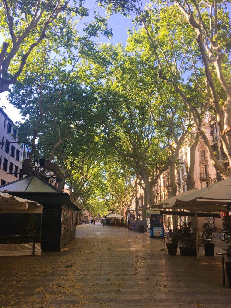 Barcelone en photo : La Rambla